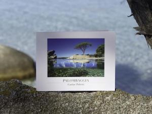 Livre Palombaggia, photographe Carine Poletti