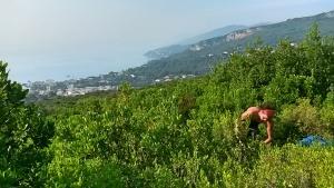 Hélène Filippi dans le maquis Corse