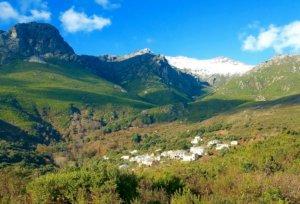 Intimu a installé sa distillerie d'huiles essentielles à Silgaggia à Brando dans le Cap Corse
