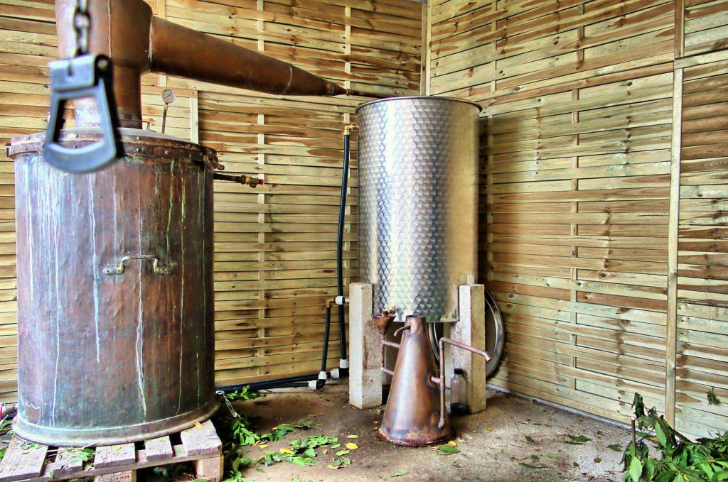 Notre atelier de distillation à Silgaggia