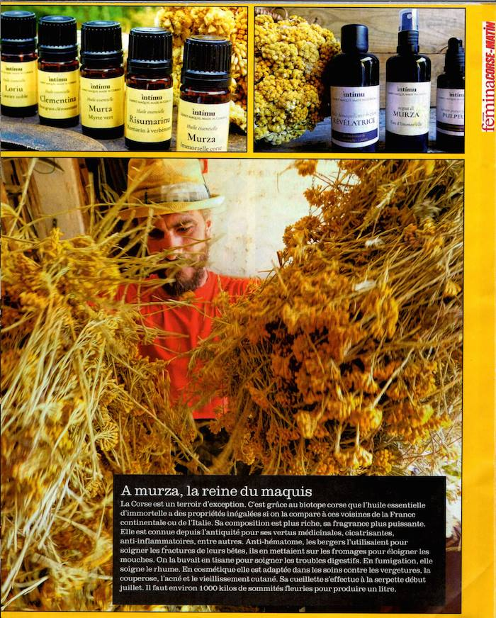 Laurent Filippi produit des huiles essentielles