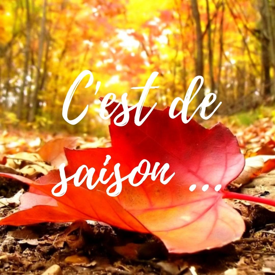 C'est de saison !