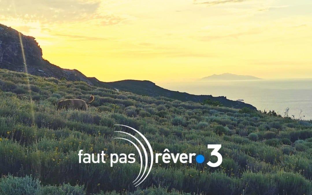 Gratitude à l'émission Faut pas rêver en Corse