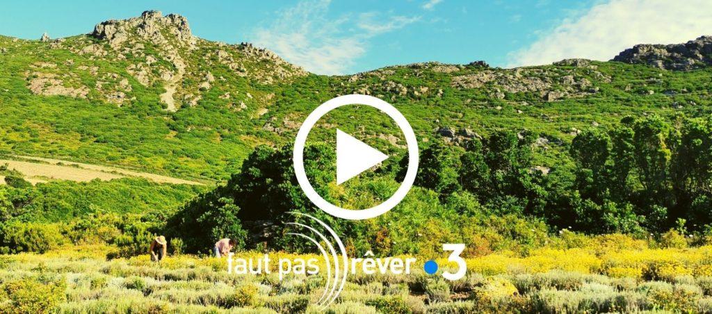Replay de l'émission Faut pas rêver en Corse