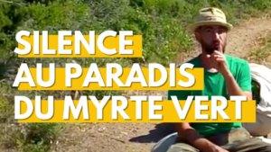 Cueillette de plantes sauvages à la pointe du Cap Corse